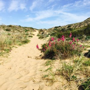 Aktiv life Coaching Reise Algarve