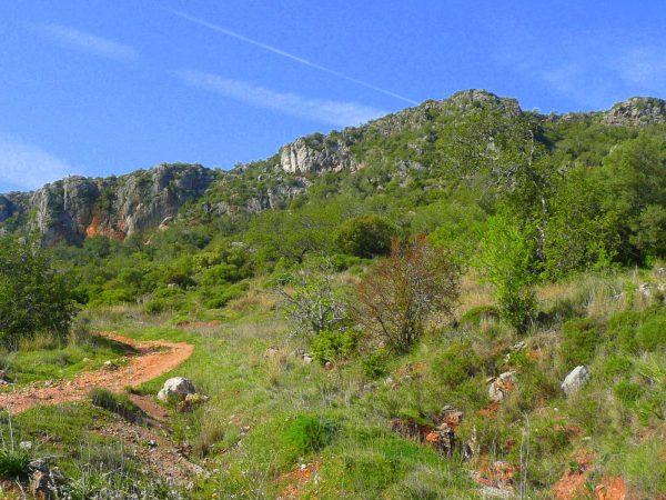Rocha da Pena | Steingarten im Bergvorland der Algarve
